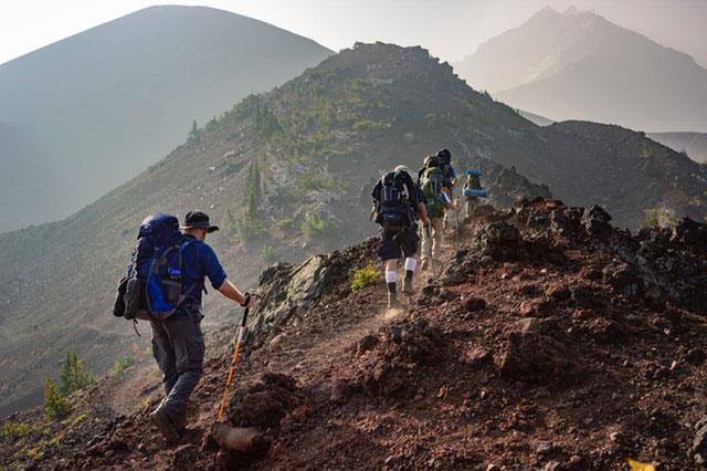 Trekkingstock Material